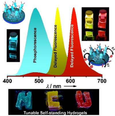 Light-Harvesting Supramolecular Phosphors: Highly Efficient Room Temperature Phosphorescence in Solution and Hydrogels