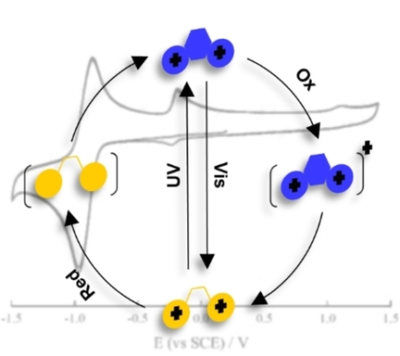 A Photo- and Redox-Driven Two-Directional Terthiazole-Based Switch: A Combined Experimental and Computational Investigation