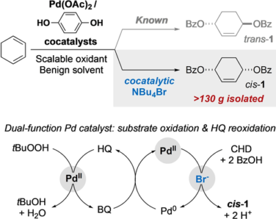 Sustainable Pd(OAc)2/Hydroquinone Cocatalyst System for Cis-Selective Dibenzoyloxylation of 1,3-Cyclohexadiene