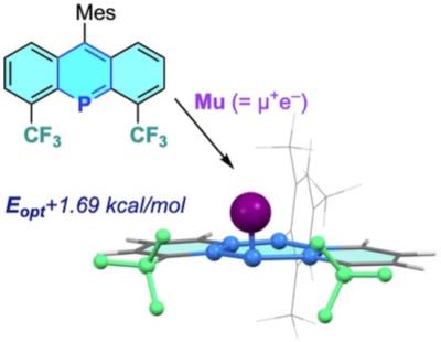 Muonium Addition to a peri-Trifluoromethylated 9-Phosphaanthracene Producing a High-Energy Paramagnetic π-Conjugated Fused Heterocycle