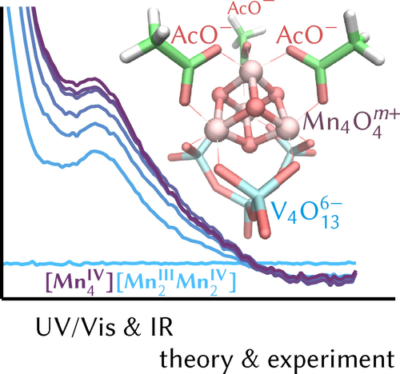 Spectral Signatures of Oxidation States in a Manganese-Oxo Cubane Water Oxidation Catalyst