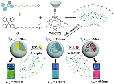 The Preparation of a Water-Soluble Phospholate-Based Macrocycle for Constructing Artificial Light-Harvesting Systems